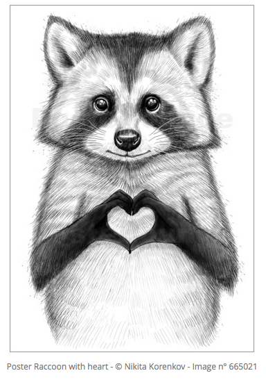Posters Raccoon With Heart Déco