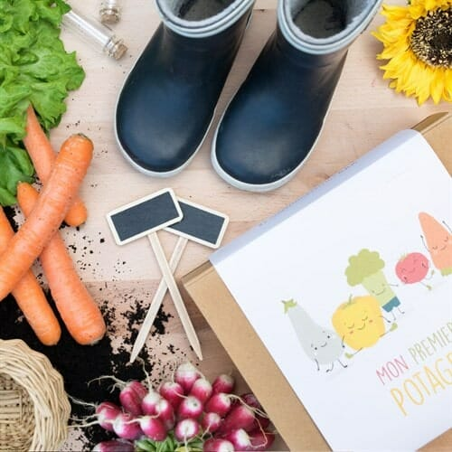 jardinage, kit pour enfant, kit de jardinage